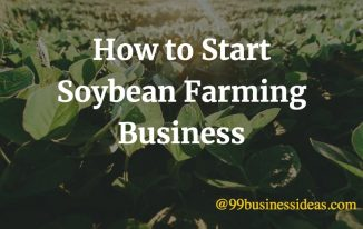 how to start soybean farming business