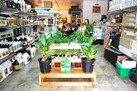 hydroponic retail store business