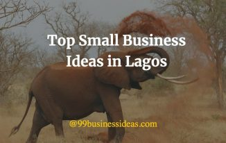 business ideas in lagos