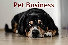 pet shop business plan
