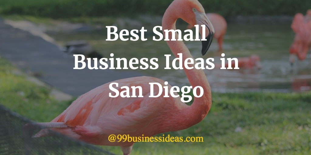 best small business ideas in san diego
