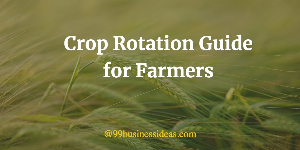 crop rotation guide for farmers